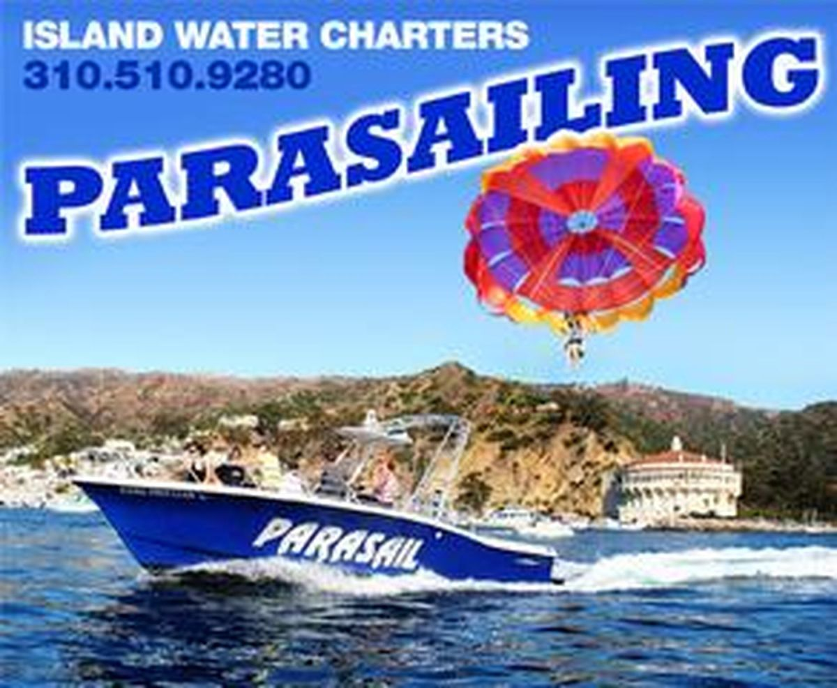 Island Water Charters - Cellar club